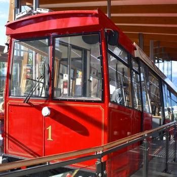 ウェリントン観光で真っ赤なケーブルカーに乗ろう♪のメイン画像